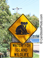 Attention Koalas - Traffic sign showing a koala and alerting...