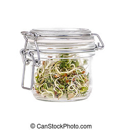 Fresh sprouts in glass jar
