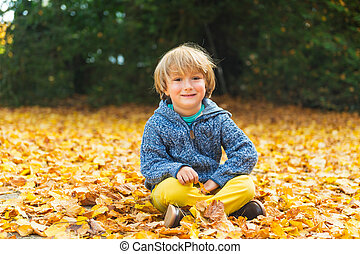 Autumn portrait of a cute little boy of 4 years old, playing...