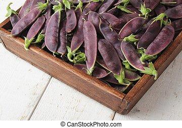 purple mange tout - fresh purple mangetout