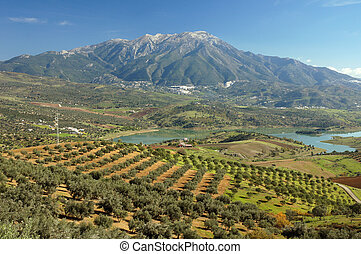 Axarquia 1 - The Axarquia region of Andalucia in Spain:...
