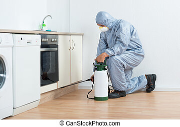 Exterminator Spraying Pesticide On Wooden Cabinet - Full...