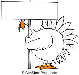 Turkey holding a blank sign - Illustration depicting a white...