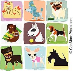 nine dog breeds - nine different dog breeds set. vector...