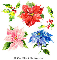Watercolor hand drawn flowers with foliage and viburnum