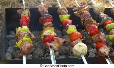 Skewers with delicious kebabs or barbeque on brazier, cam...