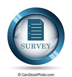Survey icon Internet button on white background