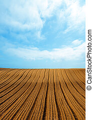 Plowed field and blue sky - Background of newly plowed field...