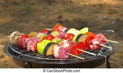Assorted meat from chicken, pork and various vegetables for barbecue on grill