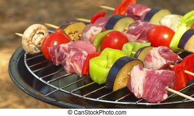 Assorted meat from chicken, pork and various vegetables for barbecue on grill, close up