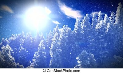 Christmac forest in mountains - Snow covered Christmac...