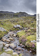 snowdonia national park - A stream running through snowdonia...