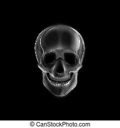 Vector illustration with a human skull.