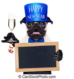 happy new year dog - pug dog toasting for new years eve with...
