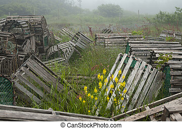Array of lobster traps in Newfoundland and Labrador - Scenic...