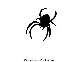 sylwetka, pająk