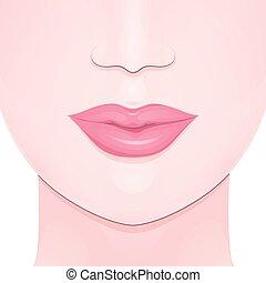 female full lips - the lower part of the girl face, female...