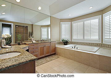 Master bath with granite counters - Master bath in luxury...