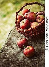 Freshly harvested grapes - Fresh harvest of apples. Wooden...