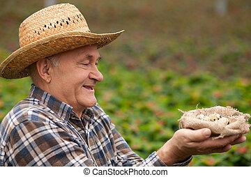 alegre, viejo, macho, trabajador, con, orgánico,...