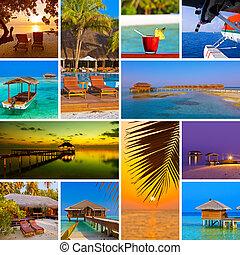 collage, de, maldivas, playa, imágenes, (my, photos),...