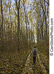 A man walking through the woods - Autumn forest and a man...