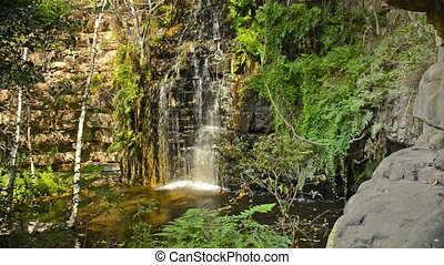 Africa Jungle Waterfall Botswana - The 5th of 5 waterfalls...