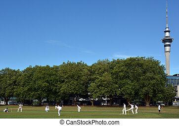hombres, juego, grillo, en, victoria, parque, Auckland,...