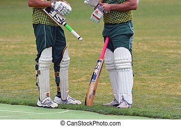 hombres, juego, Cricket, ,