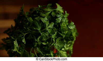 parsley leaves - Fresh organic parsley with parsley leaves