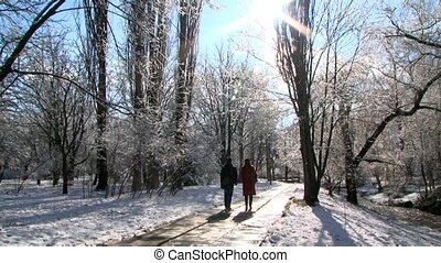 Young Couple Walking In Winter Park