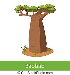 Baobab cartoon tree. Single illustration on a white...