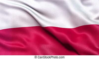 Poland flag seamless loop - Realistic flag of Poland waving...