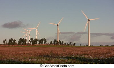 Sunlit wind turbines - Wind turbines and a warmly lit field...