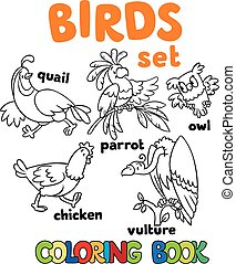 Coloring book with birds - Coloring book or coloring picture...