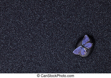 A blue butterfly in a zen garden with a black sand