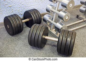 Dumbbells on a rack in a gym.