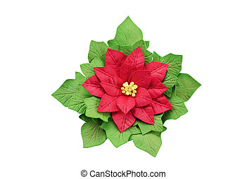 artificial flower poinsettia handmade, isolated on white...