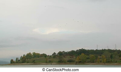 Birds Flying Over Hill In Greenery - In the frame there is a...