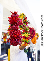 Colorful Peppers - Colorfull peppers strung and hanging in...