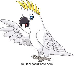 Cute white parrot presenting