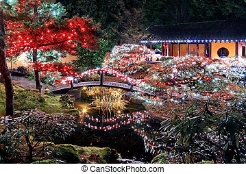 Christmas illuminations in the Park - Christmas...