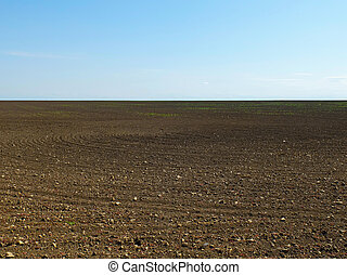 Brown dry plowed field