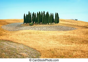 Beautiful views of summer landscape in Tuscany