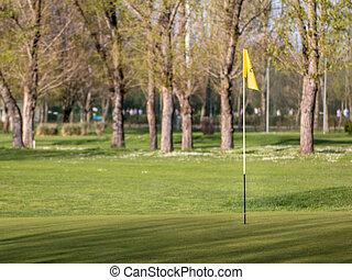 yellow flagstick in golf course in sunny day