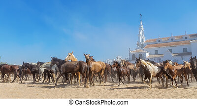 Panorama of horses running before baptism El Rocio, Spain