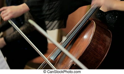 Female Musician Playing The Cello - In the frame there are...