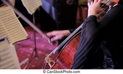 Professional Cellist Playing Classical Music On Cello - Rear...