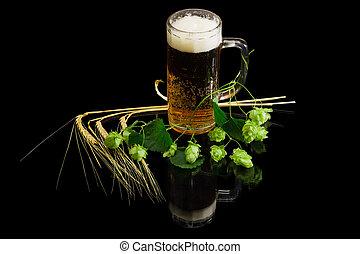 Beer glassware with beer, branch of hops, ears of barley -...