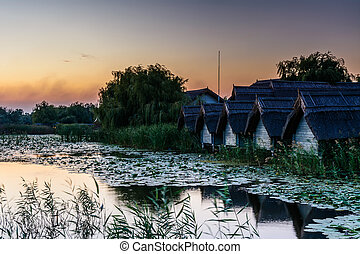 Sunset on the lake with water lilies and reeds with rustic...